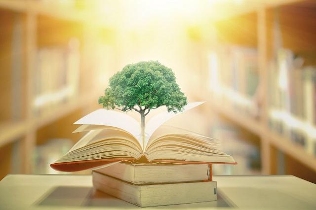 【アラサー女子】誰でもできる投資の勉強方法3選まとめ【注意点あり】